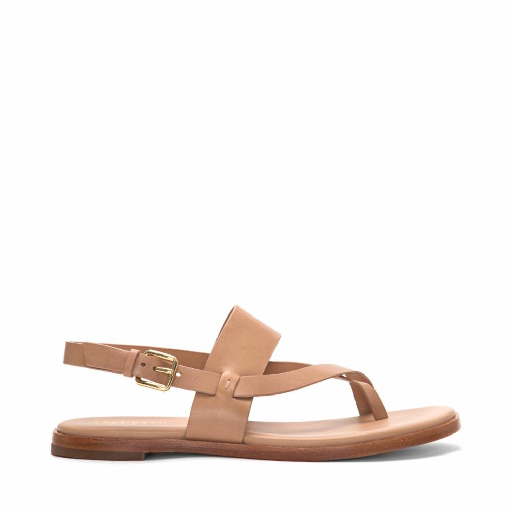f11465f32ee4 Cole Haan Women s Anica Thong Sandal Flat