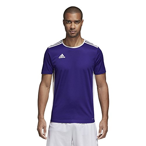 adidas Men's Entrada 18 Jersey, Collegiate Purple/White, Size 1Gco ...