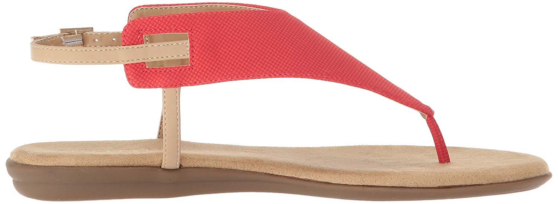 d49afda3e8d0 Aerosoles Womens Chlose Friend Open Toe Casual Slingback Sandals